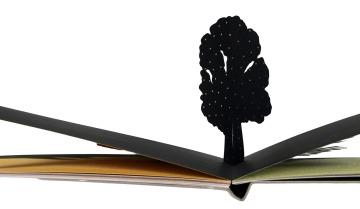 petit-arbre-détail-1web
